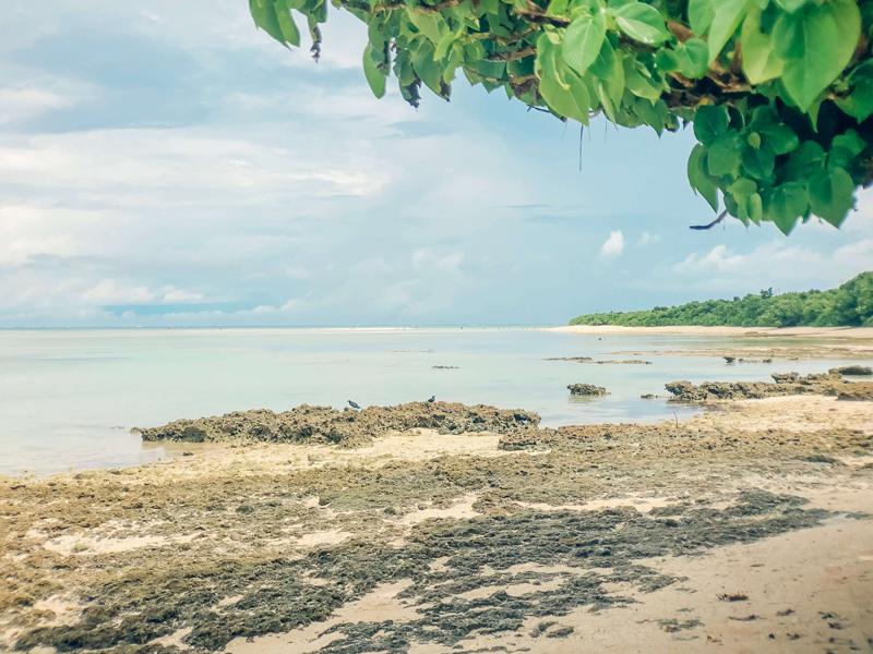 星の砂が拾える「カイジ浜」