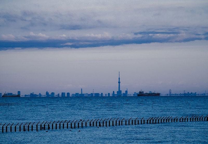 チバフォルニアから見る東京