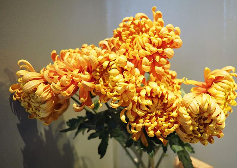 bills銀座の装花