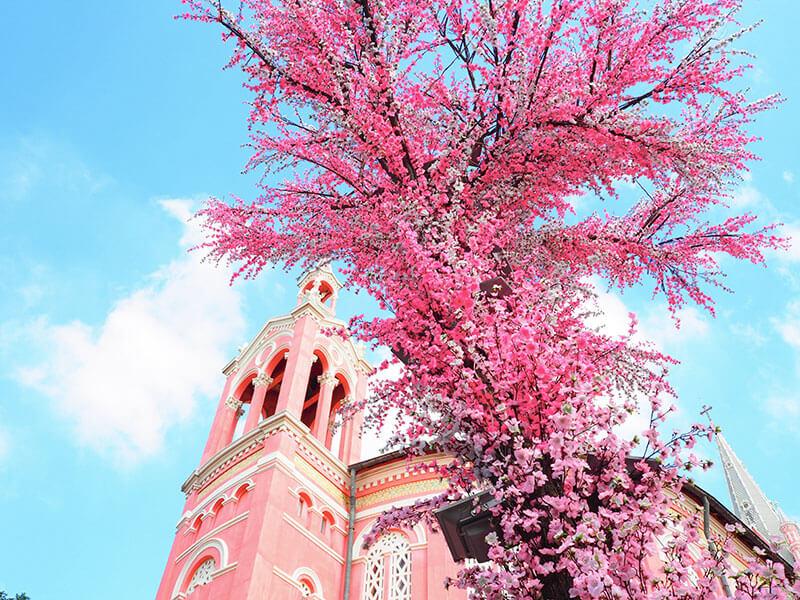 タンディン教会のお庭_2