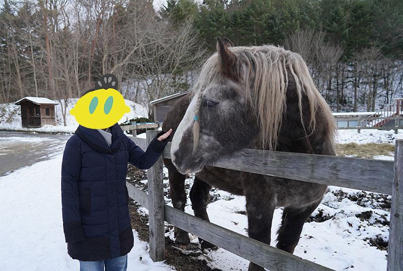 青森屋の馬